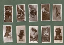 Cigarette cards Cute animal photo, cats dogs and more 1931